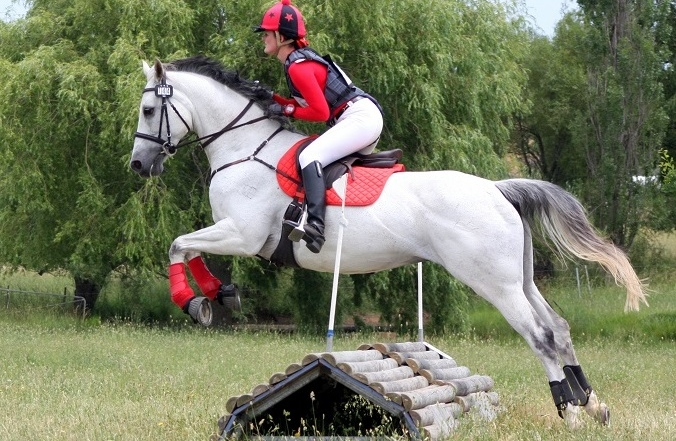 Berrima Horse Trials: 21/22 March 2015 CIC2* to EvA60